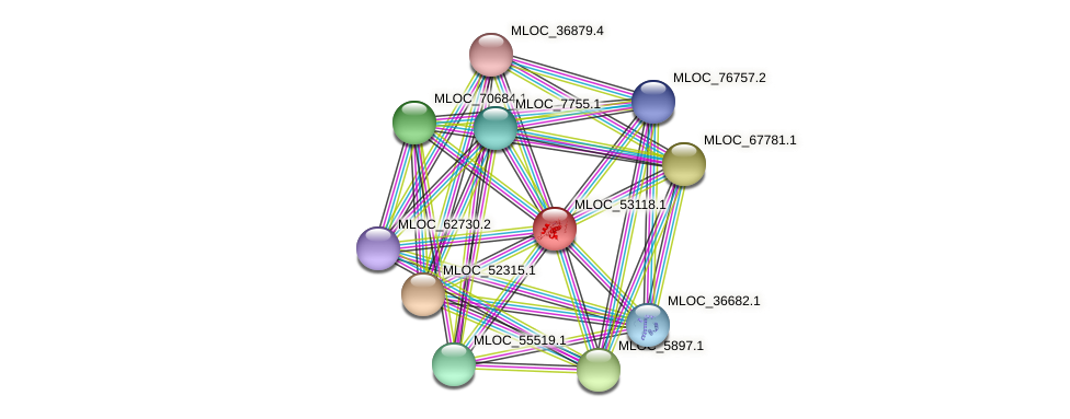 MLOC_53118.1 protein (Hordeum vulgare) - STRING interaction network