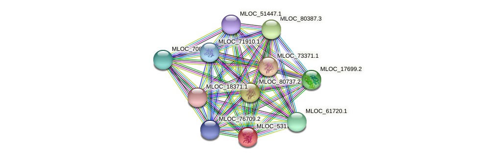 MLOC_53175.2 protein (Hordeum vulgare) - STRING interaction network
