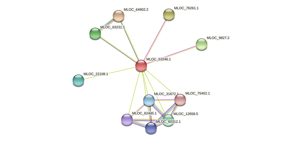 MLOC_53246.1 protein (Hordeum vulgare) - STRING interaction network