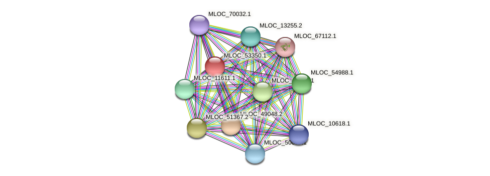 MLOC_53350.1 protein (Hordeum vulgare) - STRING interaction network
