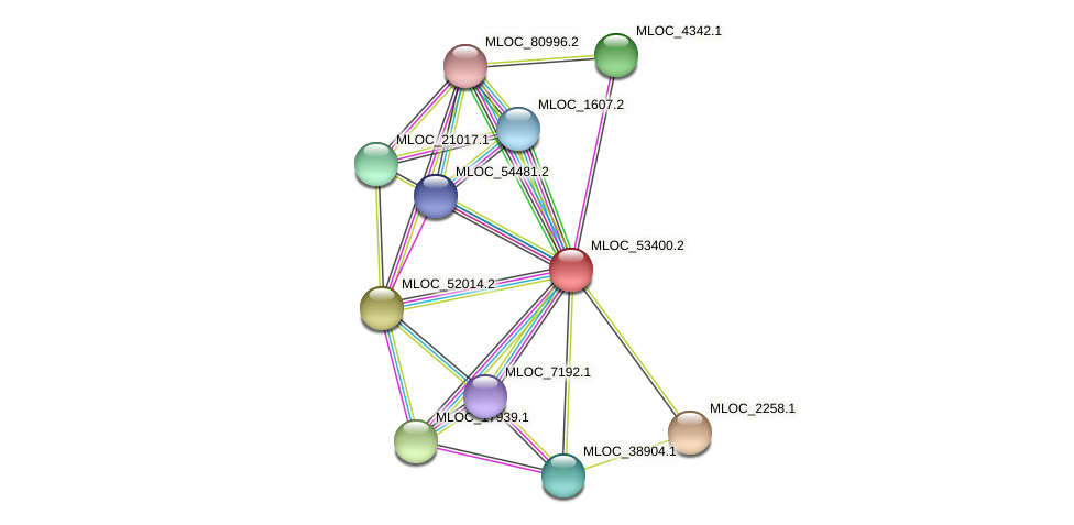 MLOC_53400.2 protein (Hordeum vulgare) - STRING interaction network