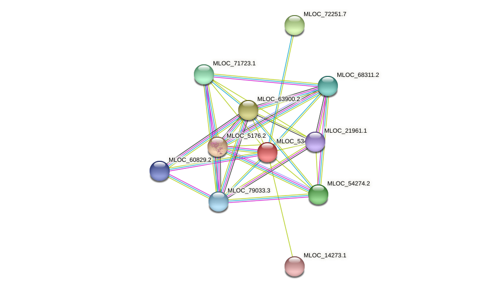 MLOC_53491.1 protein (Hordeum vulgare) - STRING interaction network