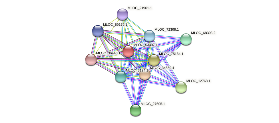 MLOC_53497.1 protein (Hordeum vulgare) - STRING interaction network