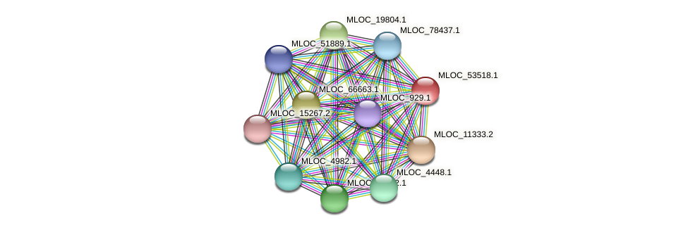 MLOC_53518.1 protein (Hordeum vulgare) - STRING interaction network