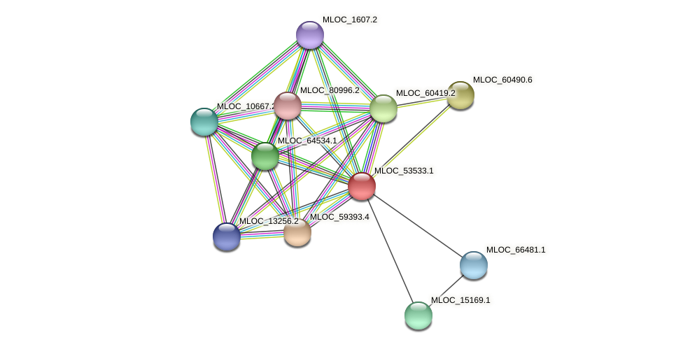 MLOC_53533.1 protein (Hordeum vulgare) - STRING interaction network