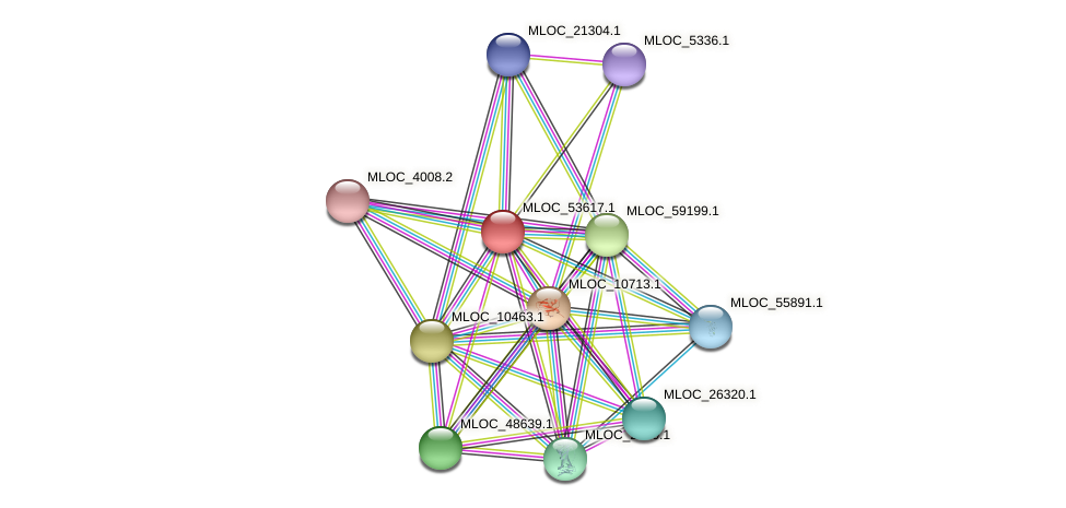 MLOC_53617.1 protein (Hordeum vulgare) - STRING interaction network