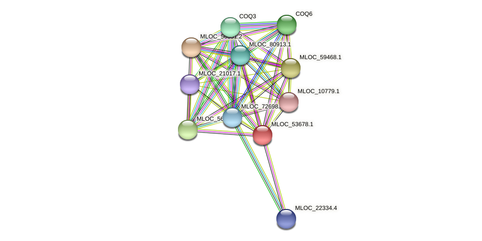 MLOC_53678.1 protein (Hordeum vulgare) - STRING interaction network