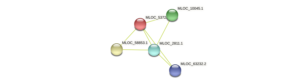 MLOC_53728.1 protein (Hordeum vulgare) - STRING interaction network