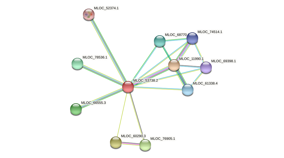 MLOC_53738.2 protein (Hordeum vulgare) - STRING interaction network