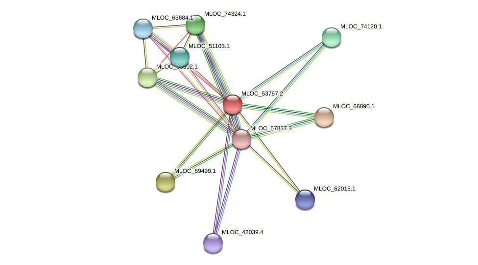 MLOC_53767.2 protein (Hordeum vulgare) - STRING interaction network