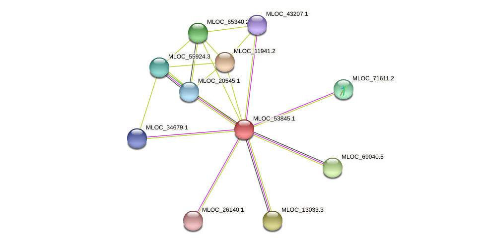 MLOC_53845.1 protein (Hordeum vulgare) - STRING interaction network