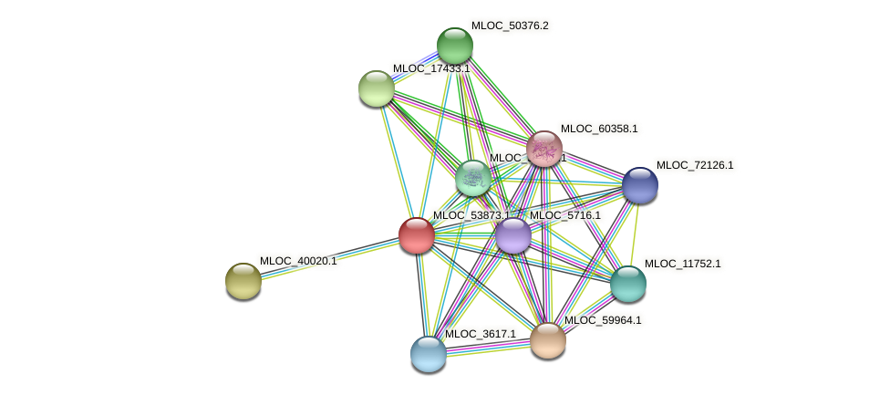 MLOC_53873.1 protein (Hordeum vulgare) - STRING interaction network