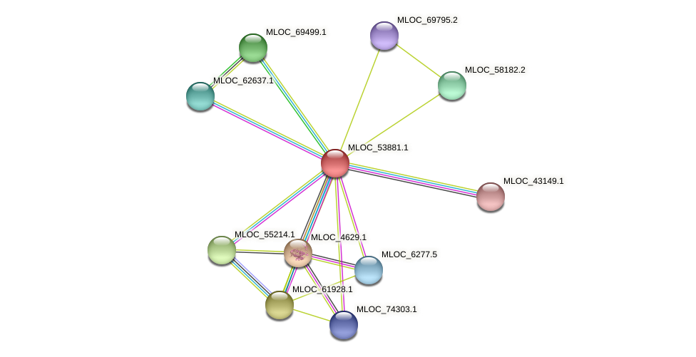 MLOC_53881.1 protein (Hordeum vulgare) - STRING interaction network