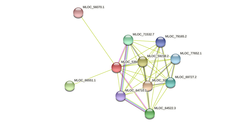 MLOC_5394.3 protein (Hordeum vulgare) - STRING interaction network