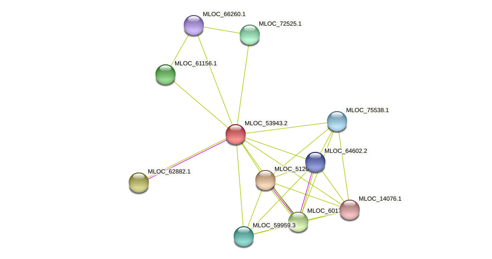 MLOC_53943.2 protein (Hordeum vulgare) - STRING interaction network