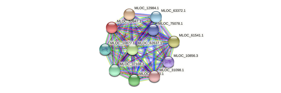 MLOC_53947.1 protein (Hordeum vulgare) - STRING interaction network