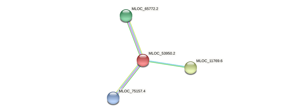 MLOC_53950.2 protein (Hordeum vulgare) - STRING interaction network