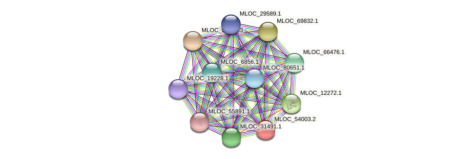 MLOC_54003.2 protein (Hordeum vulgare) - STRING interaction network