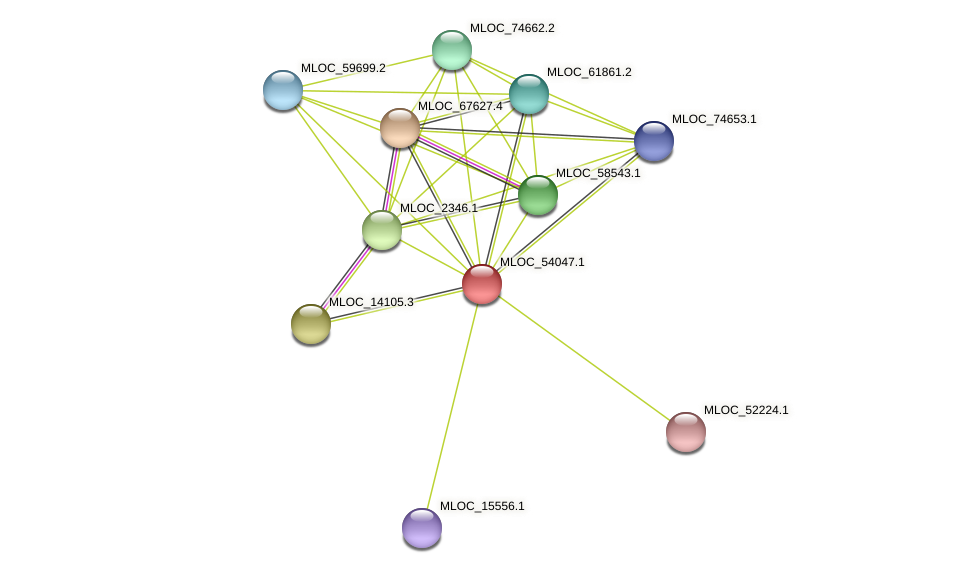 MLOC_54047.1 protein (Hordeum vulgare) - STRING interaction network