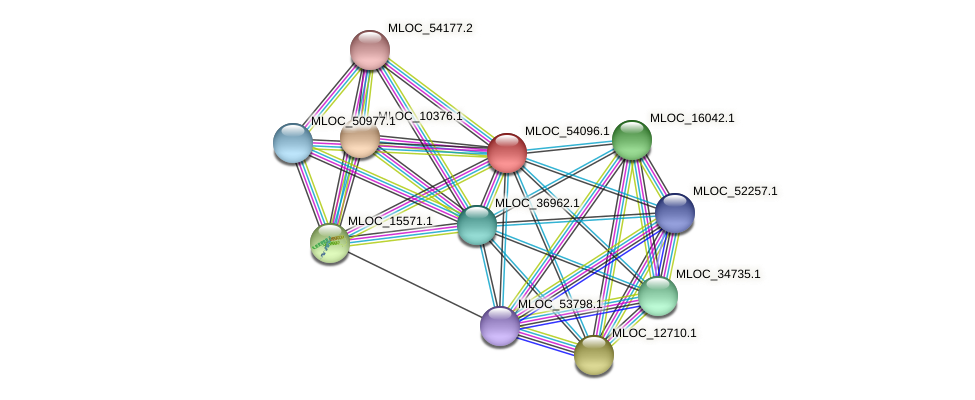 MLOC_54096.1 protein (Hordeum vulgare) - STRING interaction network