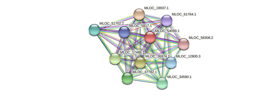 MLOC_54099.1 protein (Hordeum vulgare) - STRING interaction network