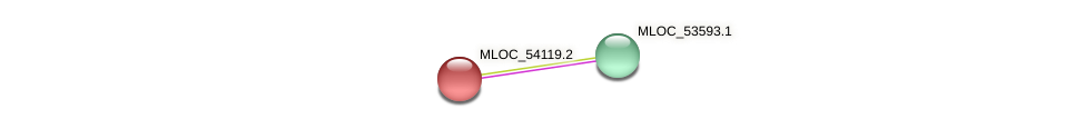 MLOC_54119.1 protein (Hordeum vulgare) - STRING interaction network