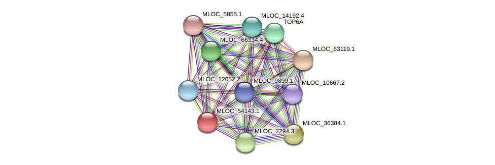 MLOC_54143.1 protein (Hordeum vulgare) - STRING interaction network