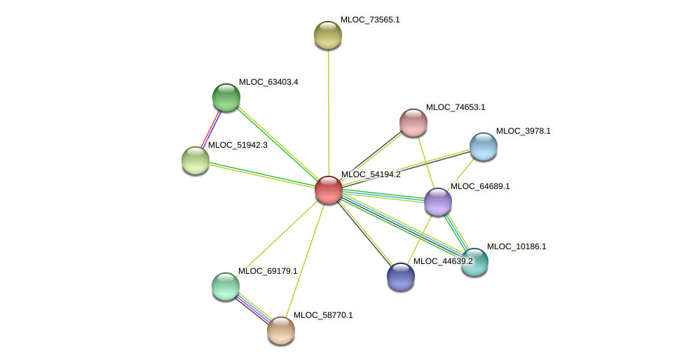 MLOC_54194.2 protein (Hordeum vulgare) - STRING interaction network