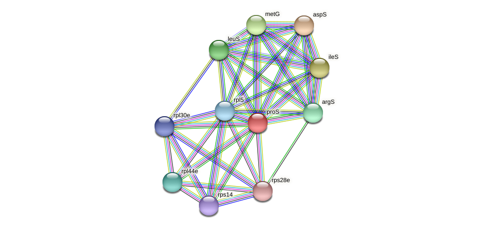 proS protein (Methanococcus voltae) - STRING interaction network