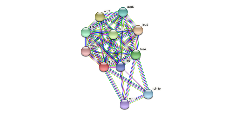 gltX protein (Methanococcus voltae) - STRING interaction network