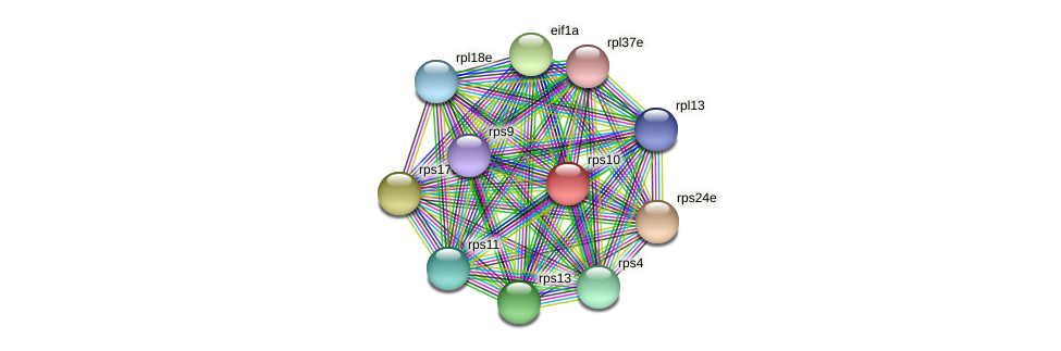 rps10 protein (Methanococcus voltae) - STRING interaction network