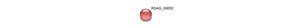 RSAG_00002 protein (Ruminococcus sp. 5139BFAA) - STRING interaction network