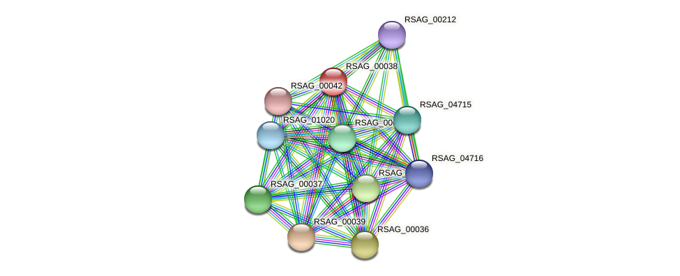 RSAG_00038 protein (Ruminococcus sp. 5139BFAA) - STRING interaction network
