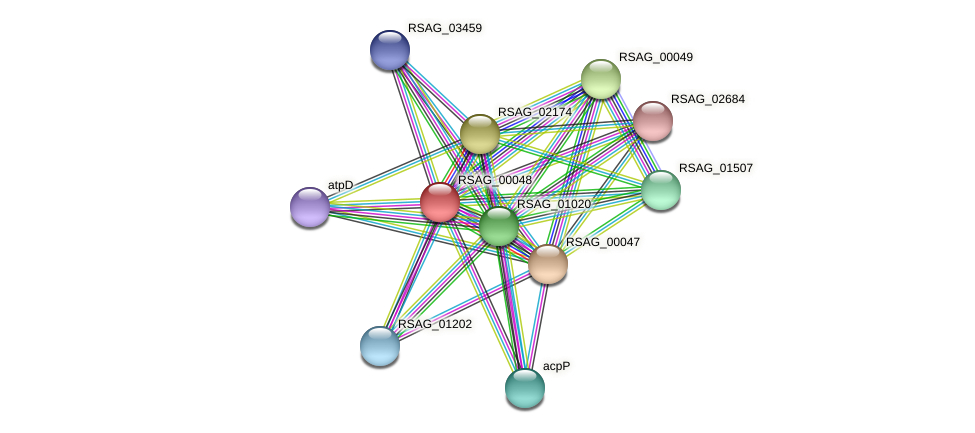 RSAG_00048 protein (Ruminococcus sp. 5139BFAA) - STRING interaction network