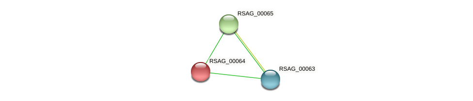 RSAG_00064 protein (Ruminococcus sp. 5139BFAA) - STRING interaction network
