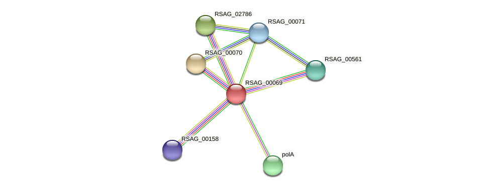 RSAG_00069 protein (Ruminococcus sp. 5139BFAA) - STRING interaction network