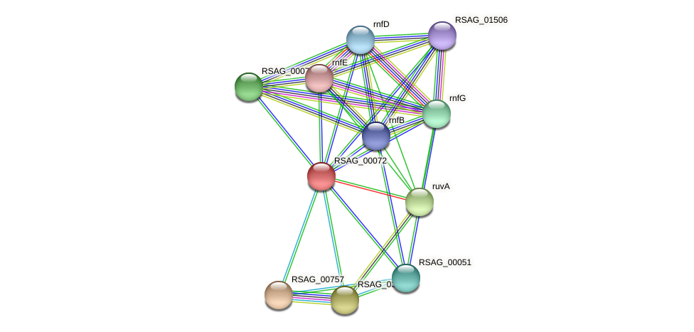 RSAG_00072 protein (Ruminococcus sp. 5139BFAA) - STRING interaction network