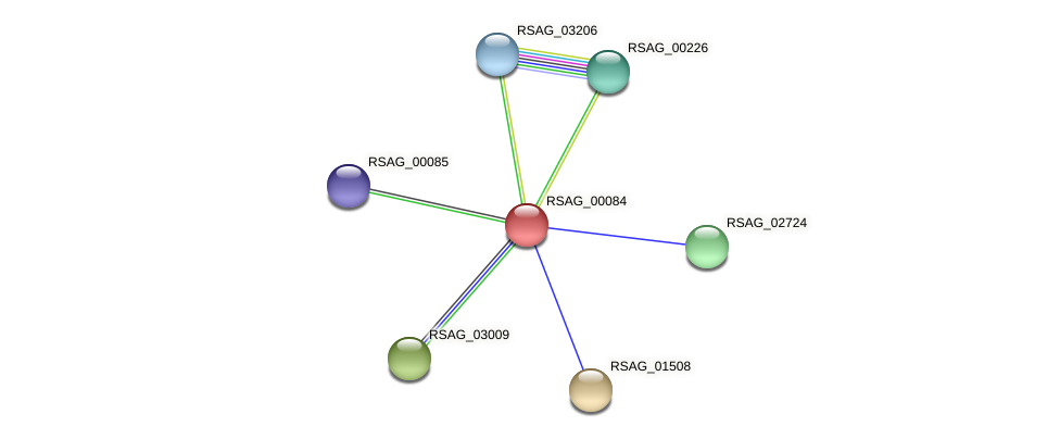 RSAG_00084 protein (Ruminococcus sp. 5139BFAA) - STRING interaction network