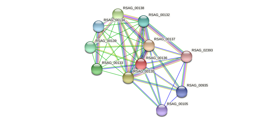 RSAG_00136 protein (Ruminococcus sp. 5139BFAA) - STRING interaction network