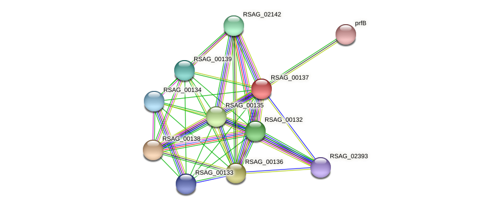 RSAG_00137 protein (Ruminococcus sp. 5139BFAA) - STRING interaction network