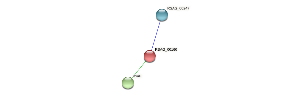 RSAG_00160 protein (Ruminococcus sp. 5139BFAA) - STRING interaction network