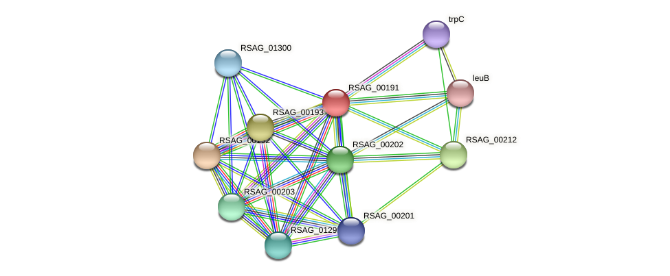 RSAG_00191 protein (Ruminococcus sp. 5139BFAA) - STRING interaction network