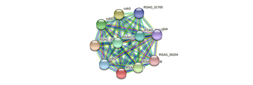 RSAG_00207 protein (Ruminococcus sp. 5139BFAA) - STRING interaction network