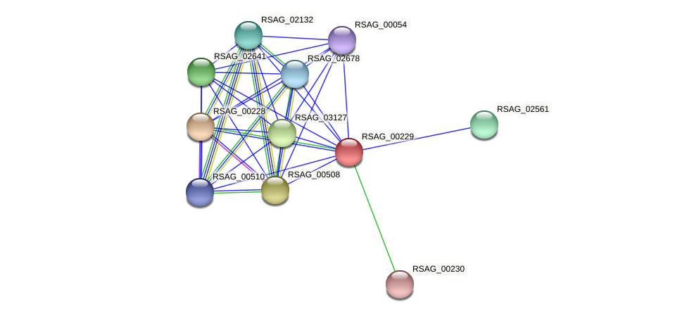 RSAG_00229 protein (Ruminococcus sp. 5139BFAA) - STRING interaction network