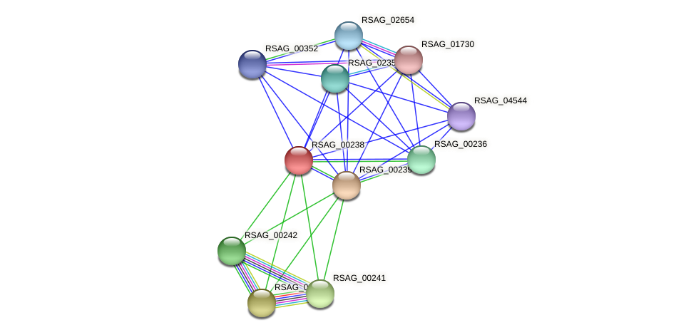 RSAG_00238 protein (Ruminococcus sp. 5139BFAA) - STRING interaction network