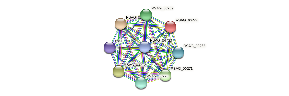 RSAG_00274 protein (Ruminococcus sp. 5139BFAA) - STRING interaction network