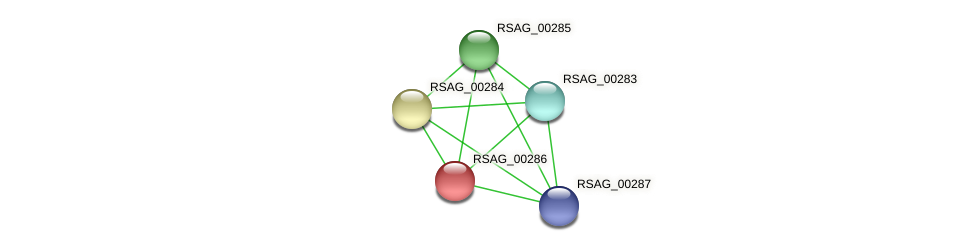 RSAG_00286 protein (Ruminococcus sp. 5139BFAA) - STRING interaction network