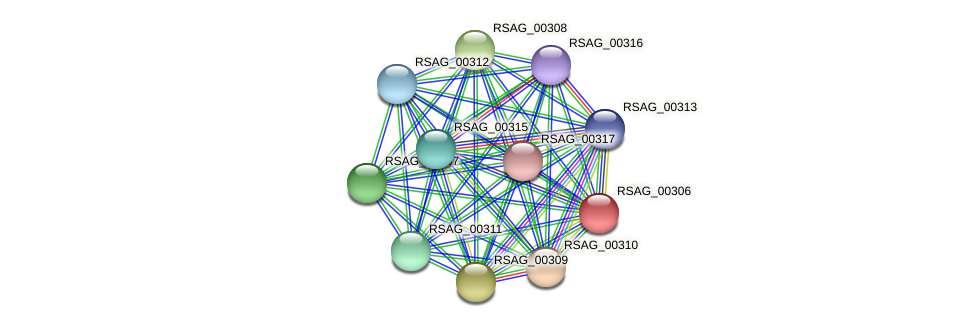 RSAG_00306 protein (Ruminococcus sp. 5139BFAA) - STRING interaction network