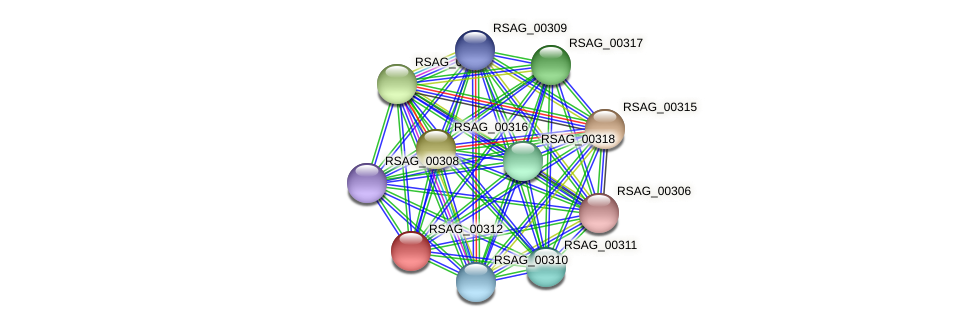 RSAG_00312 protein (Ruminococcus sp. 5139BFAA) - STRING interaction network