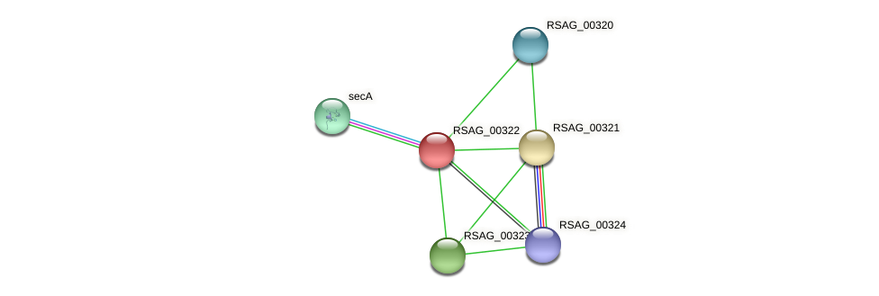 RSAG_00322 protein (Ruminococcus sp. 5139BFAA) - STRING interaction network